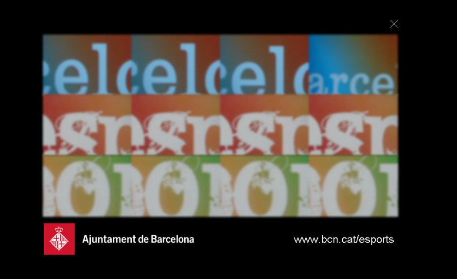 Barcelona Esports