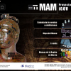 MAMM Interactive application